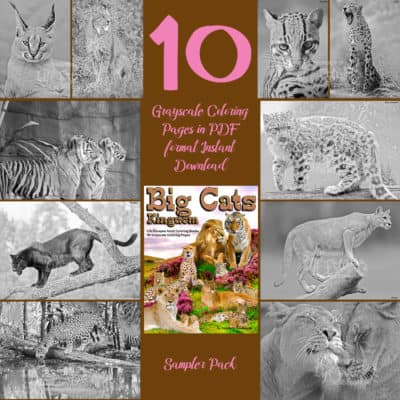 coloring pages big cats