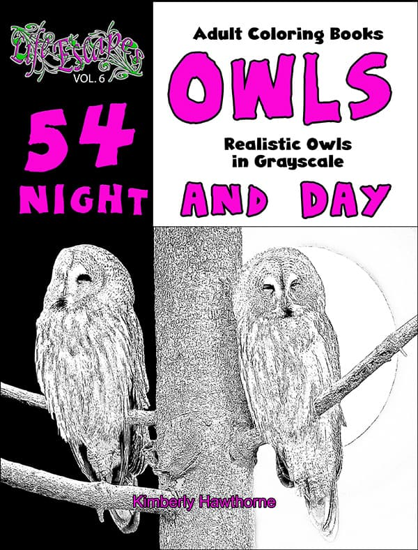 Owls Night And Day Adult Coloring Book