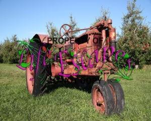 farm-1693013