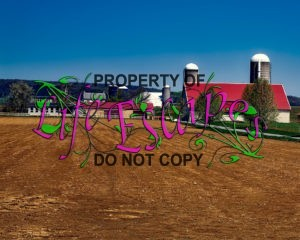 farm-1740682