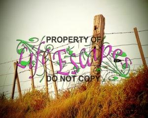 fence-336645