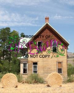 homestead-335246