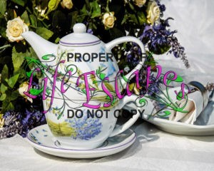 teacup-1670755