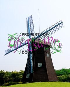 windmill-1721466