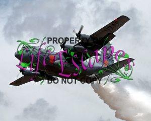 MAFFS-Modular Airborne Fire Fighting System annual training