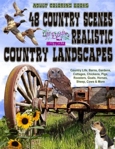 48 Country scenes adult coloring book