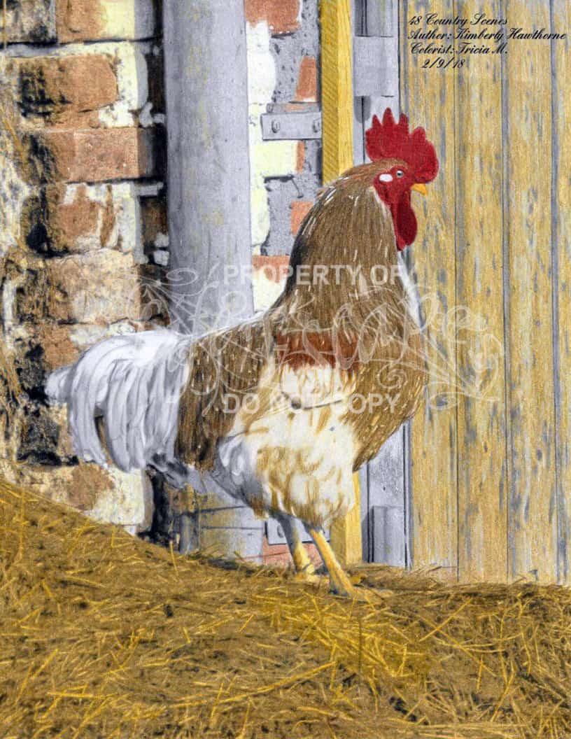 48 country scenes - Tricia Mason