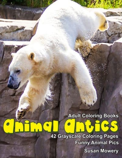 Animal Antics coloring book for adults