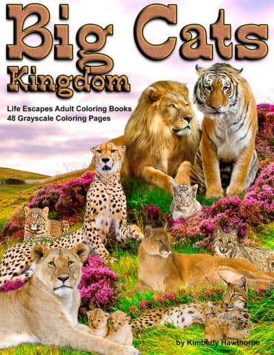 Big Cats Kingdom adult coloring book