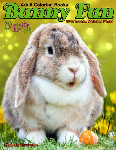 Bunny Fun adult coloring book