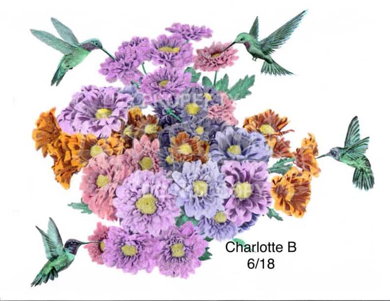 Charlotte Beeston