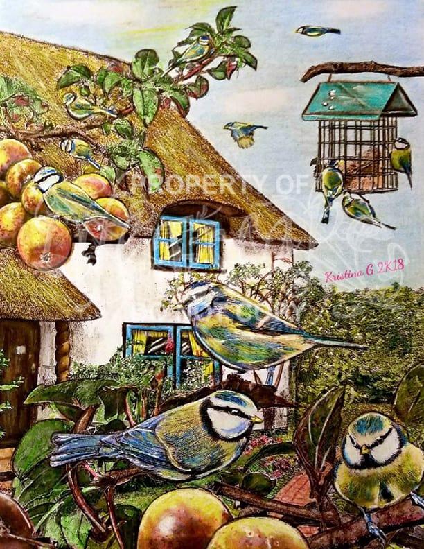 Colorful Birds - Kristina G Stash