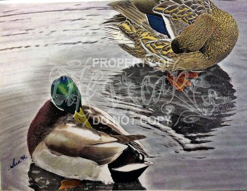 Colorful Birds - Sue Hopkins