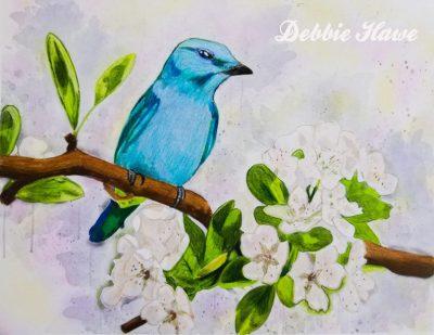 Debbie Hawe3