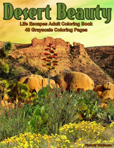 Desert Beauty adult coloring book pdf
