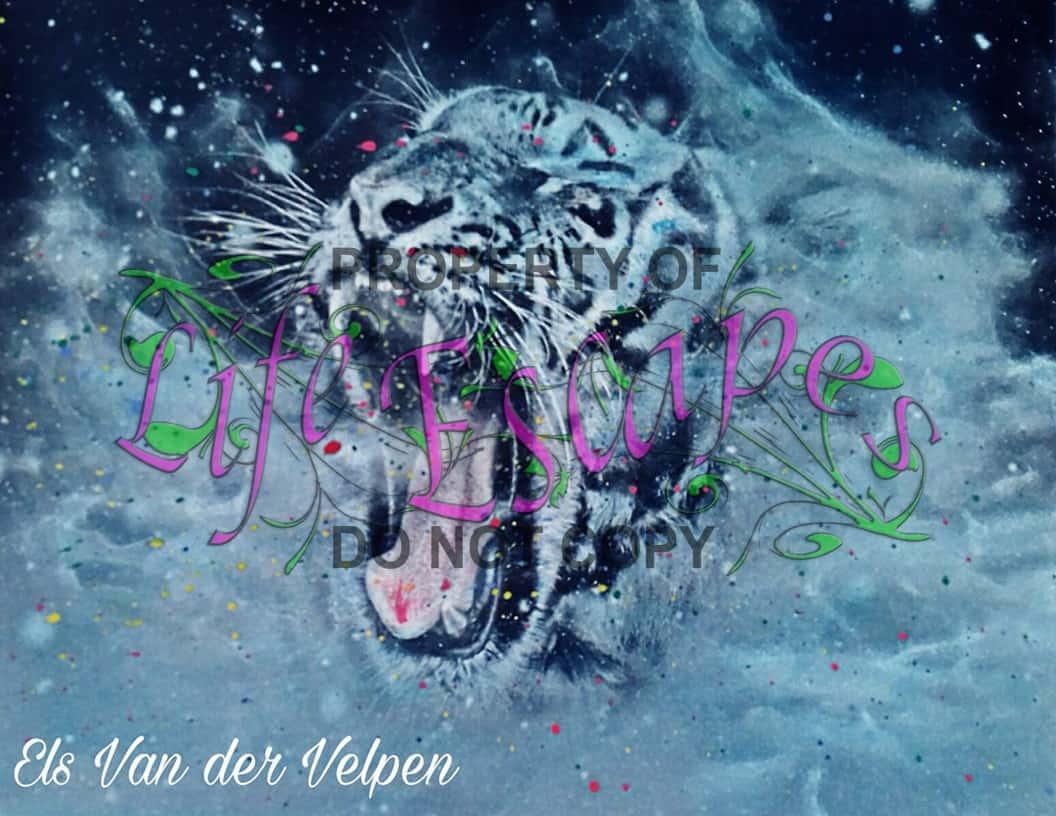 Els Van der Velpen
