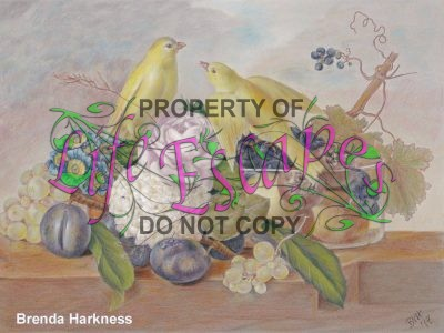 Floral Fun - Brenda Harkness