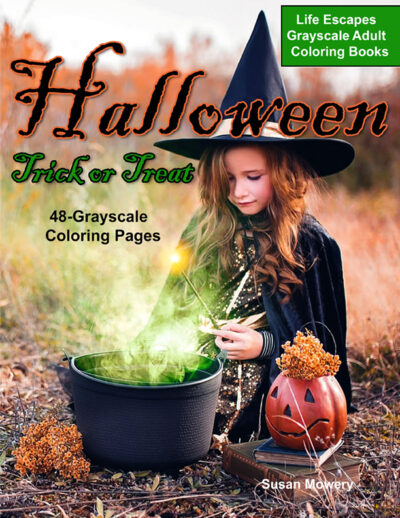 Halloween Trick or Treat adult coloring book