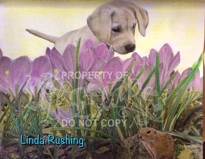 Linda Rushing3