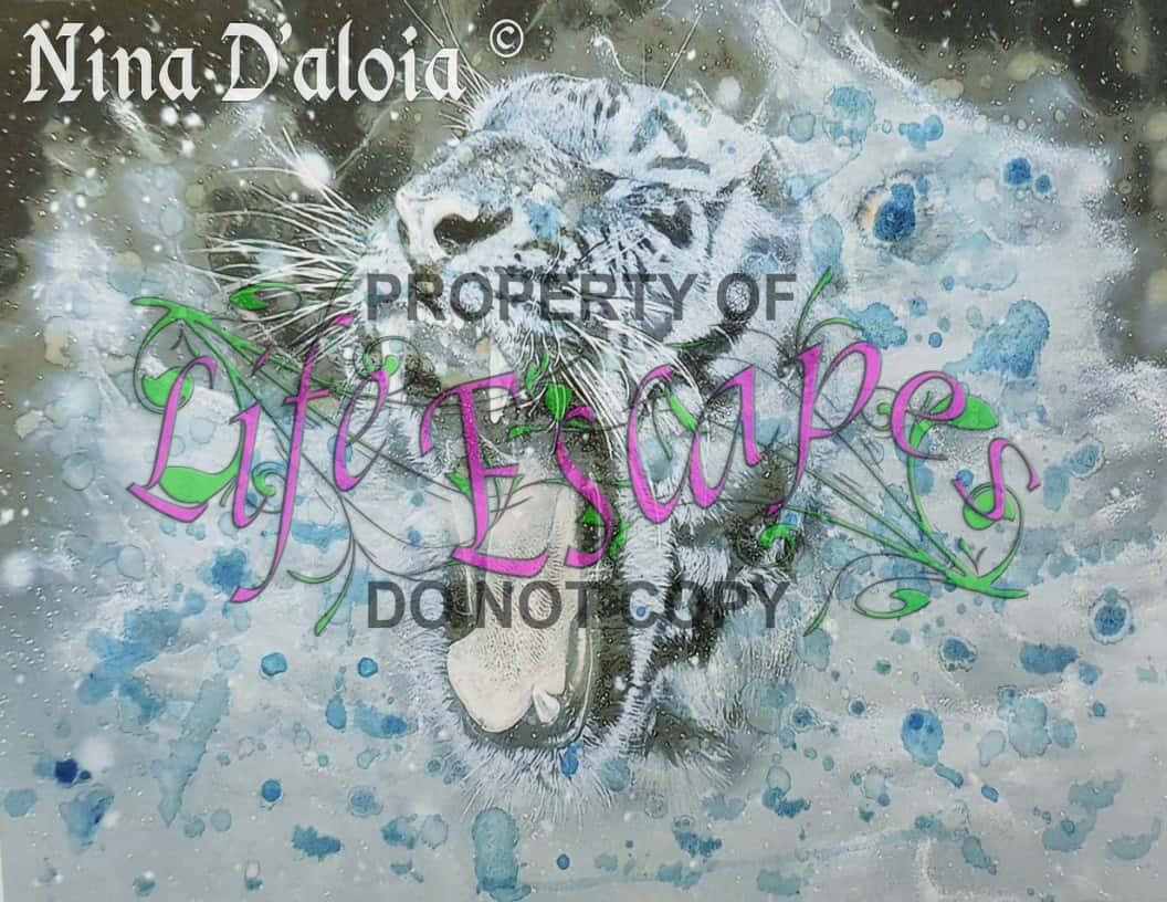 Nina Daloia3