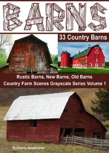 barns-adult-coloring-book