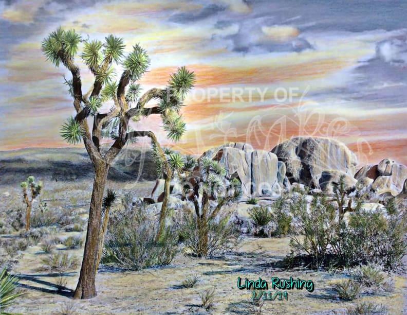 db Linda Rushing 5