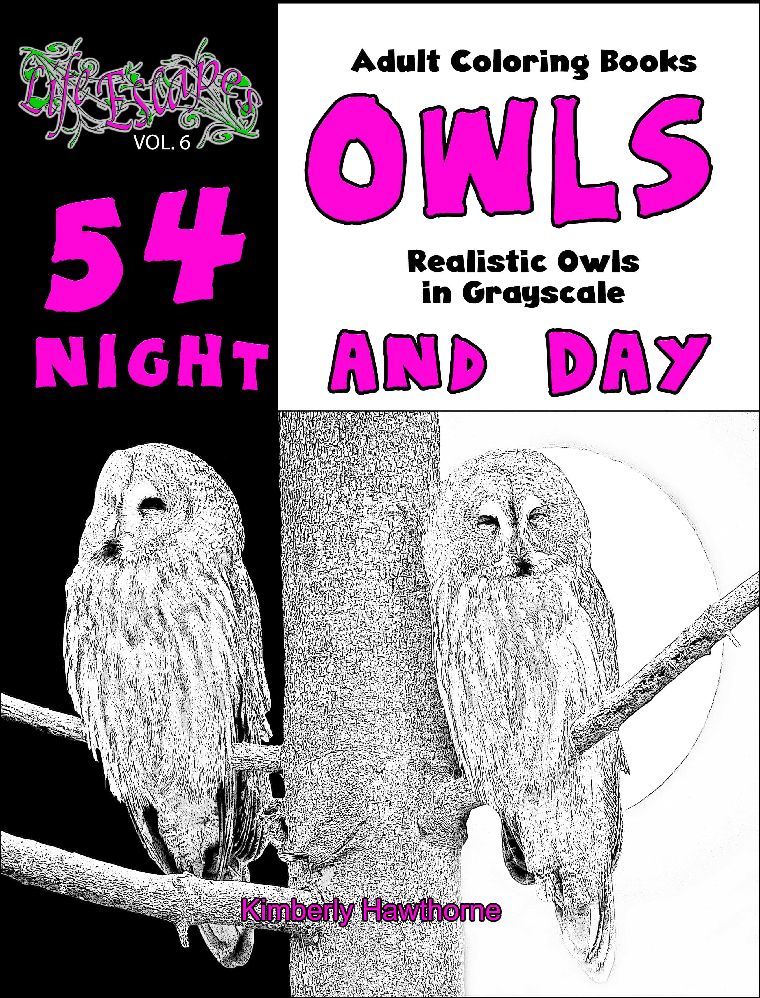 adult coloring book owls